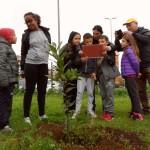 Lettura del giuramento di protezione dell'albero, per iniziativa del Comitato di Torresina