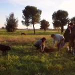 Insieme ad alcuni membri del Comitato per il Parco Archeologico di Centocelle.